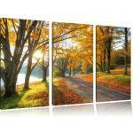 "3-tlg. Leinwandbilder-Set ""Sonniger Park am See"", Fotodruck"