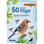 50 heimische Vögel, bunt