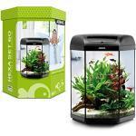 Aquael Hexa Aquarium-Set, 60L