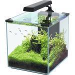 Aquarium aquatlantis Nano Cubic 30 mit Frostglasrückseite, LED-Beleuchtung, Filter, Heizer, Pumpe schwarz