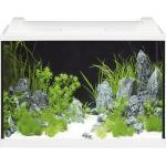 Aquarium EHEIM aquaproLED 84 mit LED-Beleuchtung, Filter, Heizer, Thermometer, Fangnetz ohne Unterschrank weiß