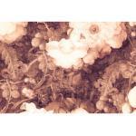 Architects Paper Fototapete Atelier 47 Art Blossom 2, floral braun Fototapeten Tapeten Bauen Renovieren