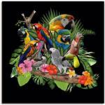 Bunte Moderne Artland Alu-Dibond Bilder mit Tiermotiv