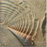 Sandfarbene Zeitgenössische Artland Keilrahmenbilder