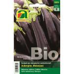 AUSTROSAAT Bio Aubergine Violetta lunga 3 - 1 Pkg