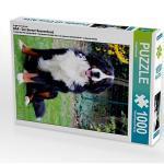 BÄR - Der Berner Sennenhund Foto-Puzzle Bild von Sonja Brenner Puzzle