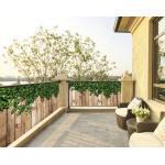 Balkonbespannung PVC Efeu 95x300 cm (geöst alle 50 cm)