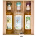 Berta Grappa Box Primavene mit 6 x 0,2 L Flaschen