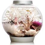 biOrb Baby-Aquarium, 30x 32cm, Schwarz