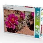 CALVENDO Puzzle Violetter Prickly Pear Cactus 2000 Teile Lege-Größe 90 x 67 cm Foto-Puzzle Bild von Wilczek Dieter-M.