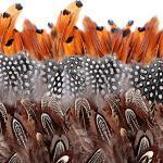 Camelize Natürlich Braun Federn,350 Stück Indianer Federn basteln,DIY Deko Federn für Dream Catcher Crafts,Kostüme, Hüte, basteln, Zuhause Dekor, Halloween,DIY Dekoration(5-8cm)