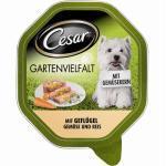 Cesar Gartenvielfalt mit Geflügel & Gemüse & Reis | 14x150g Nassfutter