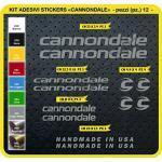 Code 0089- Cannondale Fahrrad-Aufkleber, selbstklebend, 12Sticker, Auswahl von Farben - Grigio Medio cod. 074