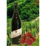Contri Fragolino rosso Terre del Sole Perlwein 750 ml.