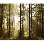 decomonkey Fototapete selbstklebend Wald 343x256 cm Selbstklebende Tapeten Wand Fototapeten Tapete Wandtapete klebend Klebefolie Landschaft Baum Natur