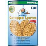 DENNERLE Catappa Leaves große Blätter 18x10cm (10 Stück)