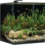 Dennerle NanoCube Aquarium, 60 Liter