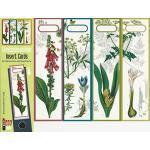 Design Ordner-Rückenschilder zum Einstecken - Motiv Botanical collection - für breite Din A4-Ordner, original von File Art