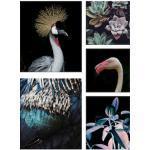 Disney Leinwandbild Tropics, (Set, 5 St.) bunt Leinwandbilder Bilder Bilderrahmen Wohnaccessoires