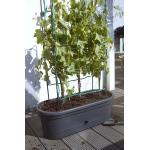 elho green basics veggie wall 80 cm - 1 Stk.