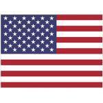 Flagus Fahne Usa