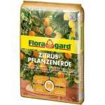 Floragard Zitruspflanzenerde 10 L,U 5