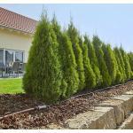 Reduzierte Gardena Micro-Drip Bewässerungsartikel