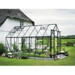 Gewächshaus Halls Magnum 148 11,5 m² Blankglas 3 mm 257x446 cm grün