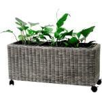 GreenGarden® 99965 Rattan Pflanzkübel, Pflanztrog 84 x 30 x 34/40 cm auf Rädern