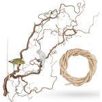 Große Korkenzieherhasel Sitzstange zum Aufhängen mit toll verschnörkelten Zweigen   Der wohl Beste Vogelspielplatz für Wellensittich, Nymphensittich, Kanarienvogel