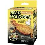 Halogen Spot Repti, 100 W