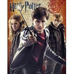 Harry Potter Maxiposter, Trio, 40 x 50 cm