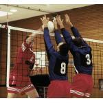 Huck Volleyball-Turniernetz DVV