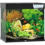 Juwel Lido 120 LED Aquarium - schwarz