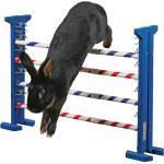 Kaninchen Agility Kombisprung, Höhe 53 cm