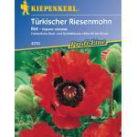 """Kiepenkerl Türkischer Riesenmohn """"Rot"""" - 1 Pkg"""