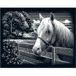 """Kratzbild """"Pferd, Landschaft"""" 25 x 20 cm"""