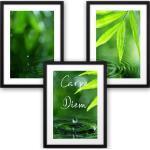 Grüne Kreative Feder Poster