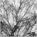 Weiße abstrakte Bilder