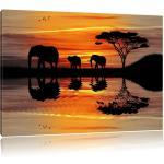 Schwarze Afrika Bilder