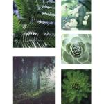 Leinwandbild Bilder-Set 5er-Set Besonnen 80x60 cm