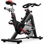 Life Fitness Indoor Bike IC2 by ICG