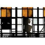 living walls Fototapete Walls by Patel Bronx 2 orange Fototapeten Tapeten Bauen Renovieren