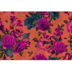 living walls Fototapete Walls by Patel Spanish Rose 2 orange Fototapeten Tapeten Bauen Renovieren
