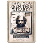 LOGOSHIRT Blechschild mit Harry Potter-Motiv bunt Metallschilder Bilder Bilderrahmen Wohnaccessoires Geschenkartikel