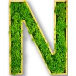 Moosly® Moosbuchstabe - N Selbstklebend Made in Germany Moosbild Wandbild Moos Deko Holzbuchstabe Wandtattoo Wanddeko   Ca. 12 X 6 cm