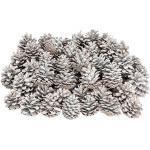 NaDeco Schwarzkiefer Zapfen weiß 1kg Pinus nigra weiße Tannenzapfen weiße Kiefer Zapfen weiße Weihnachtsdeko