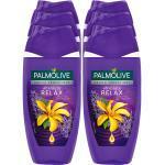 Palmolive Duschgel Aroma Sensations Absolute Relax 250 ml, 6er Pack