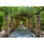 papermoon Vlies- Fototapete Digitaldruck 350 x 260 cm, Garden of Athens (GLO769559112)