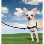 Schwarze PetSafe Easy Walk Erziehungsgeschirre für Hunde